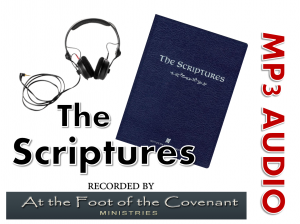 Scriptures on Audio