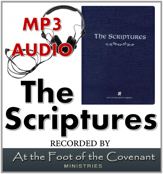 audioscripturess4